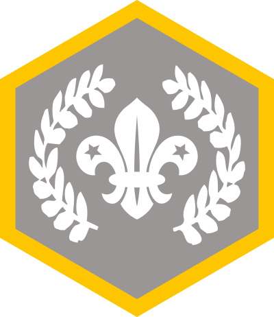 Chief Scouts Silver Award Badge